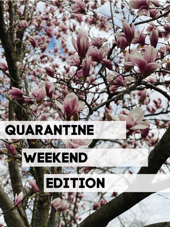 What I've Been Up To: Quarantine Weekend Edition